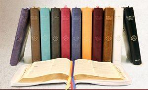 baner Biblia Pierwszego Kościoła