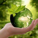 Trwa kongres ekologiczny przed ŚDM