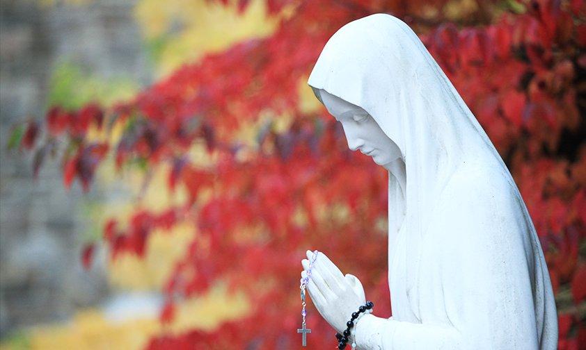 Figura Matki Bożej z Banneux na Światowym Dniu Ubogich w Watykanie